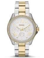 FOSSIL AM4543